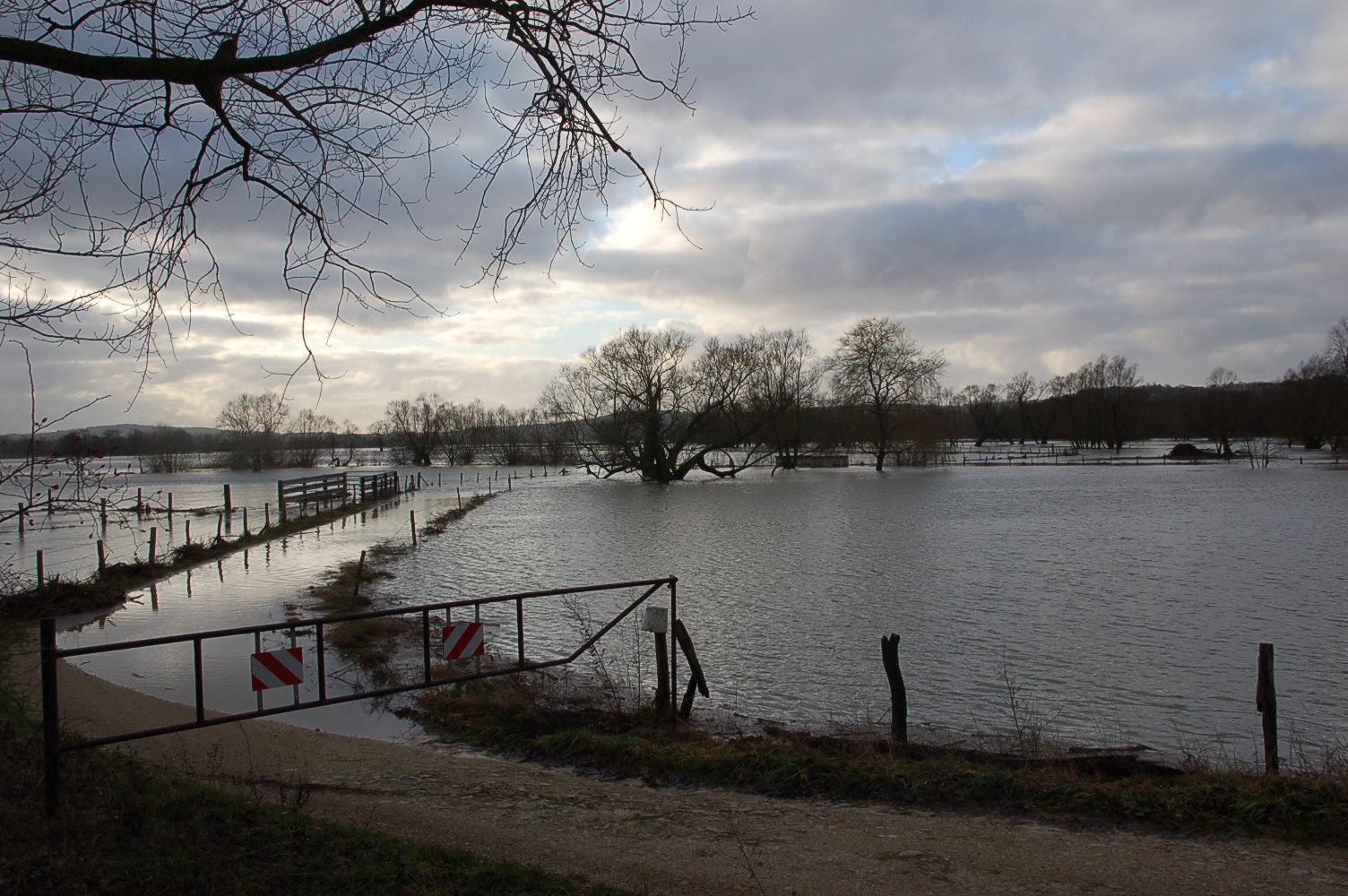 Crue de la Meuse