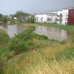 Création d'un bassin tampon - Parc de L'Archyre